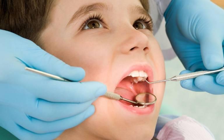 Chữa viêm nướu răng bằng lá lốt cần lưu ý gì?
