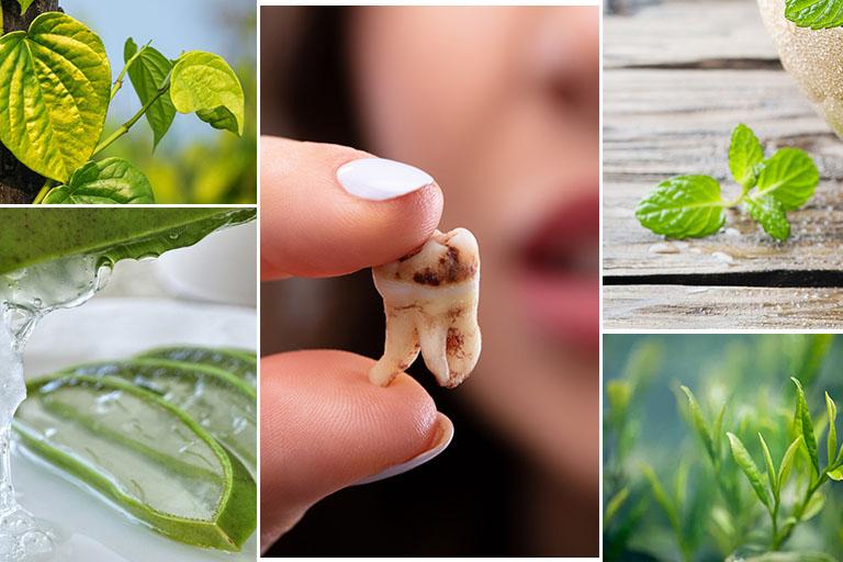 cách trị sâu răng tại nhà